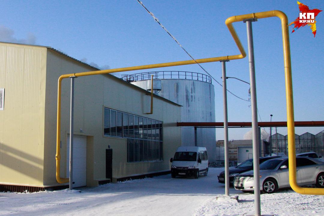 Александр Кощеев рассказал омерах повосстановлению газоснабжения вряде домов Барнаула