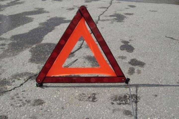 ВТатарстане шофёр сбил насмерть мужчину, выставлявшего аварийный знак