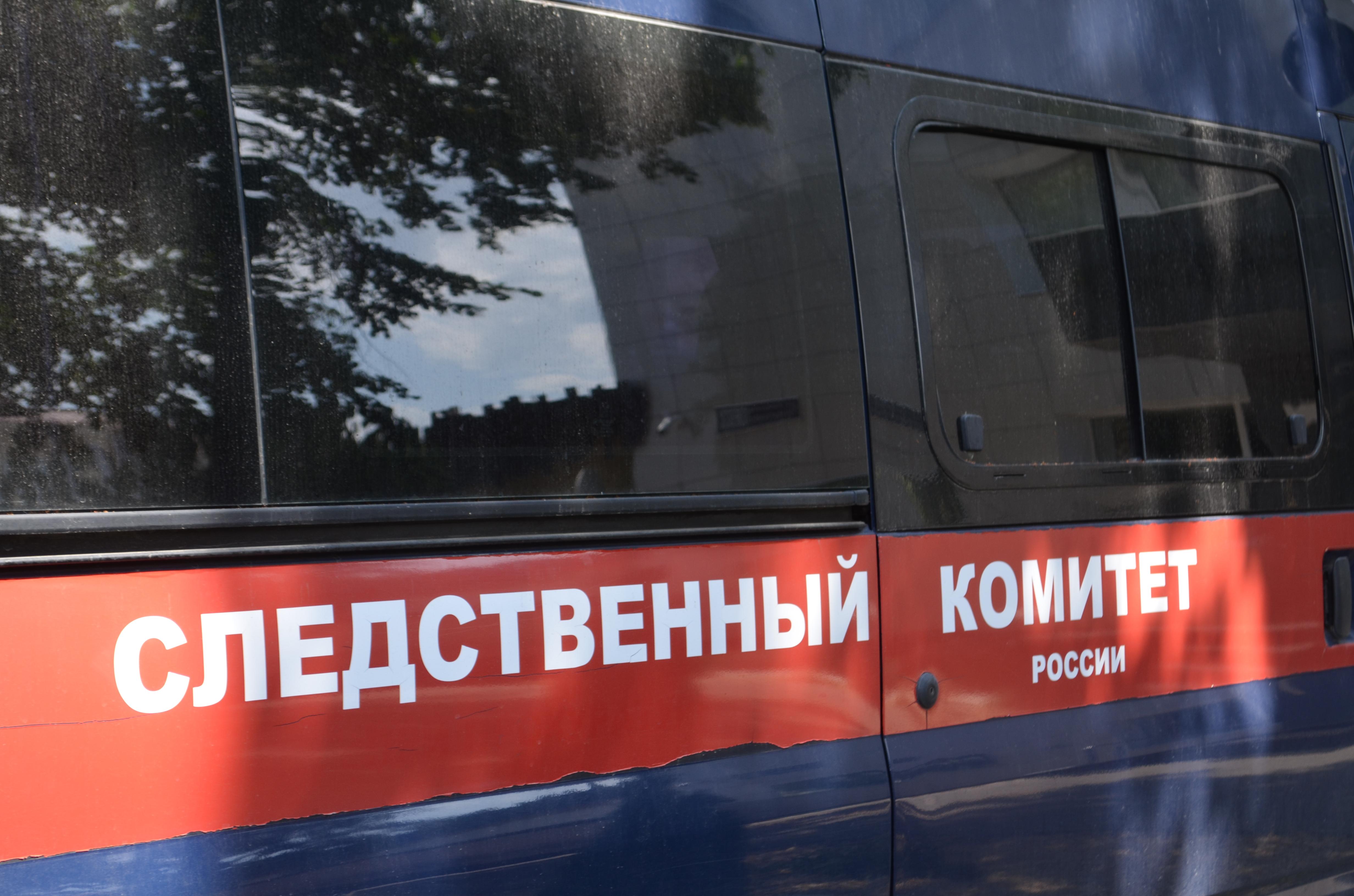 Наполмиллиона руб. ограбил педофила белгородский ребенок