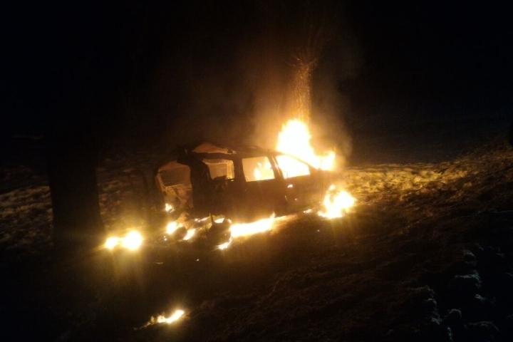 Двое пострадали взагоревшемся отудара сдеревом авто наСтаврополье