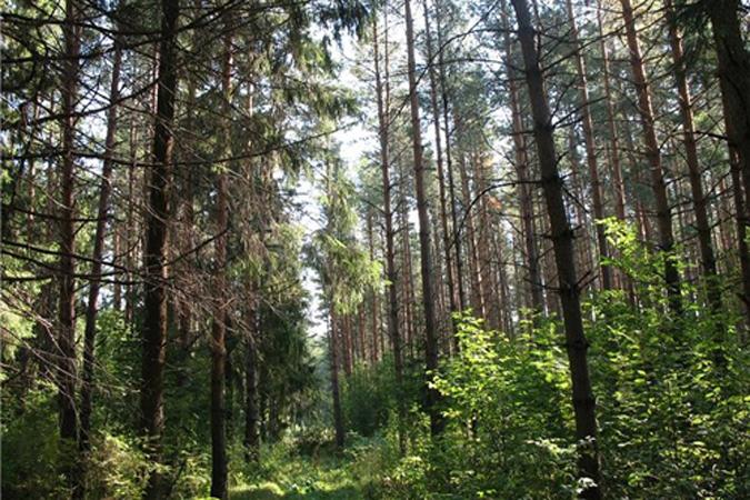 НаКубани планируют сделать 40 особо охраняемых природных территорий регионального значения