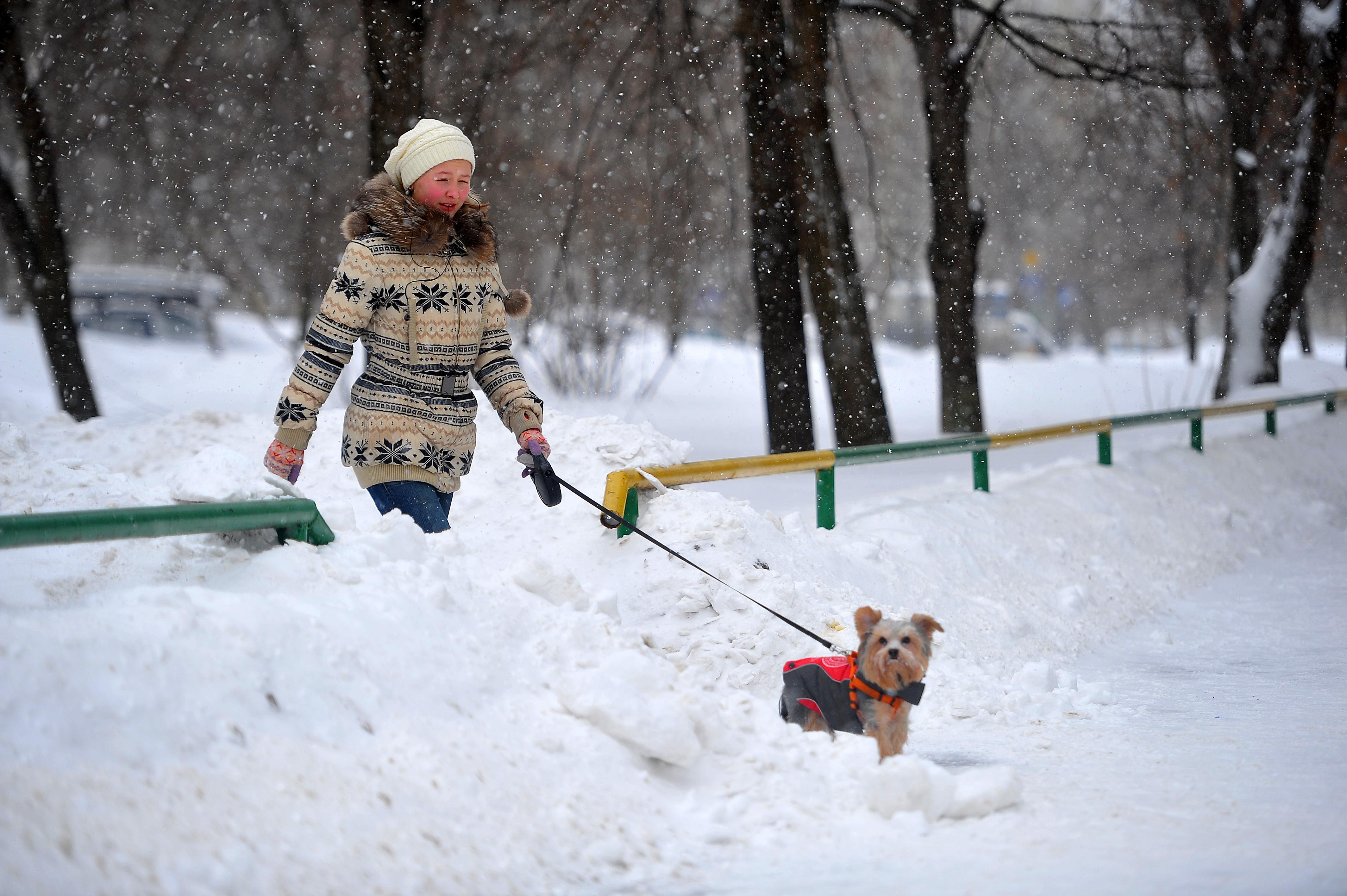 Отсутствие заморозков может привести к разгулу эпидемии гриппа и ОРВИ.