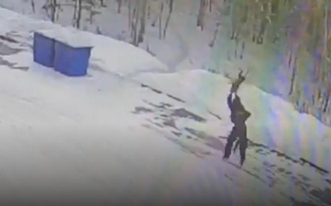 Милиция поймала живодера, который безжалостно убил собаку под Иркутском