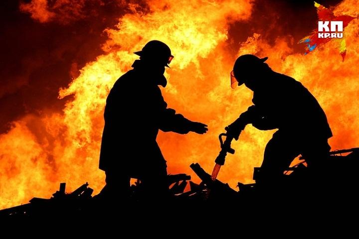 Женщина свосьмилетним сыном живьем сгорели вУдмуртии