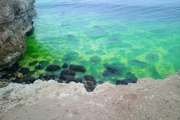 ВСевастополе акватория бухты Круглая окрасилась взеленый цвет