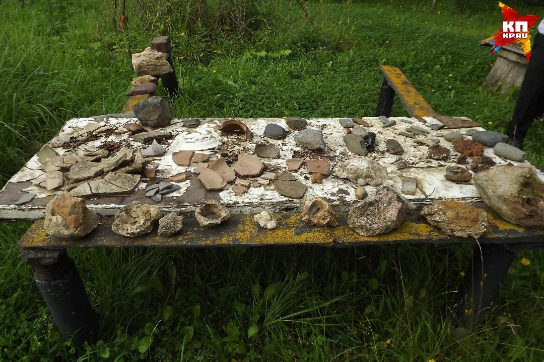Многие находки до сих пор так и лежат в огороде Фото: Ирина ТАРАСОВА