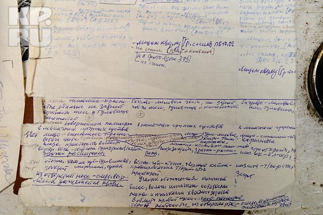 Эти записи Юрия Юдина - большая ценность для исследователей трагедии