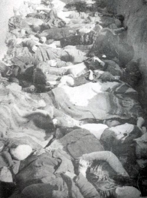 Планы ОУН предполагали не только выступления против советской власти, но и преследование казавшихся им нелояльных элементов: поляков, евреев и русских