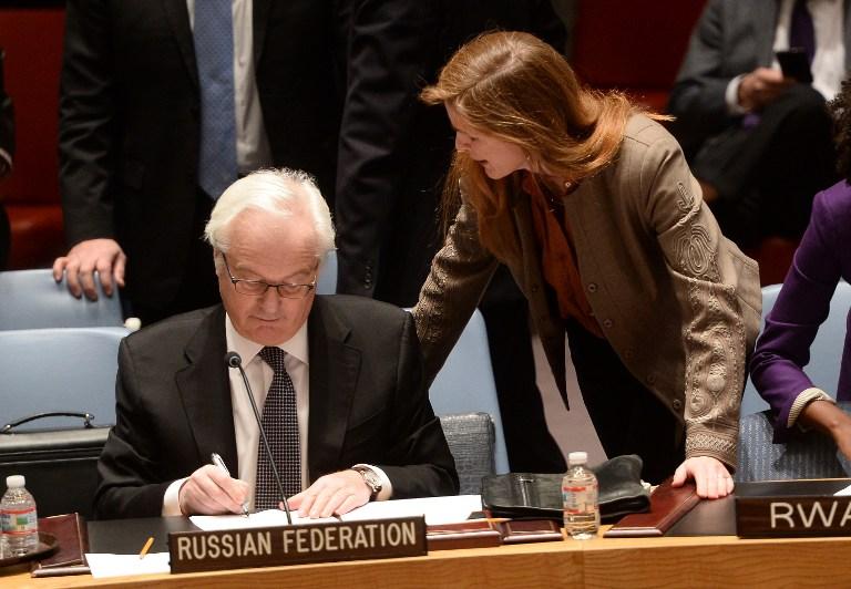 Дипломат буквально накинулась на Виталия Чуркина Фото: REUTERS