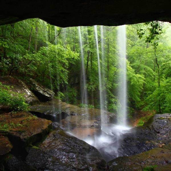 Грот с водопадом в Аптекарском огороде