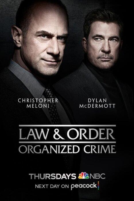 Закон и порядок: Организованная преступность 2 сезон