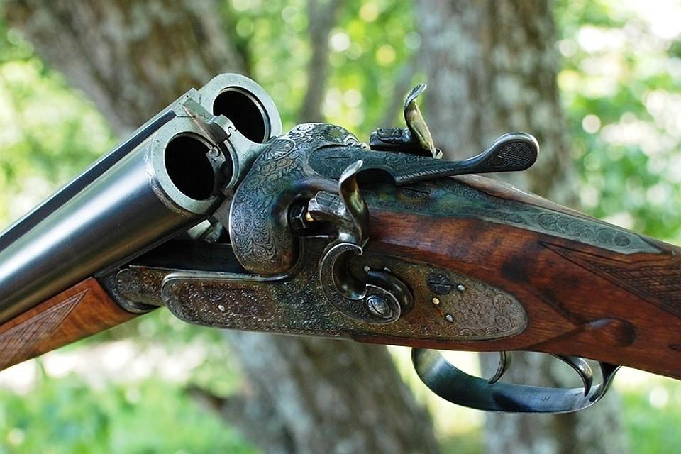 Ружье в картинках