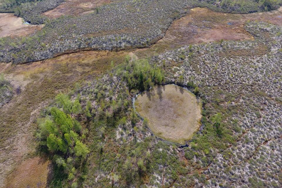 Сусловскую воронку Кулик считал кратером от падения метеорита.