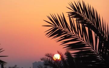 """Жаркая осень в Дубае: эксперты обещают """"горящие"""" туры на бархатный сезон"""