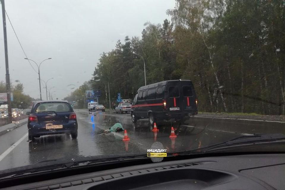 Два пешехода погибли утром в Новосибирской области. Фото: «Инцидент Новосибирск»