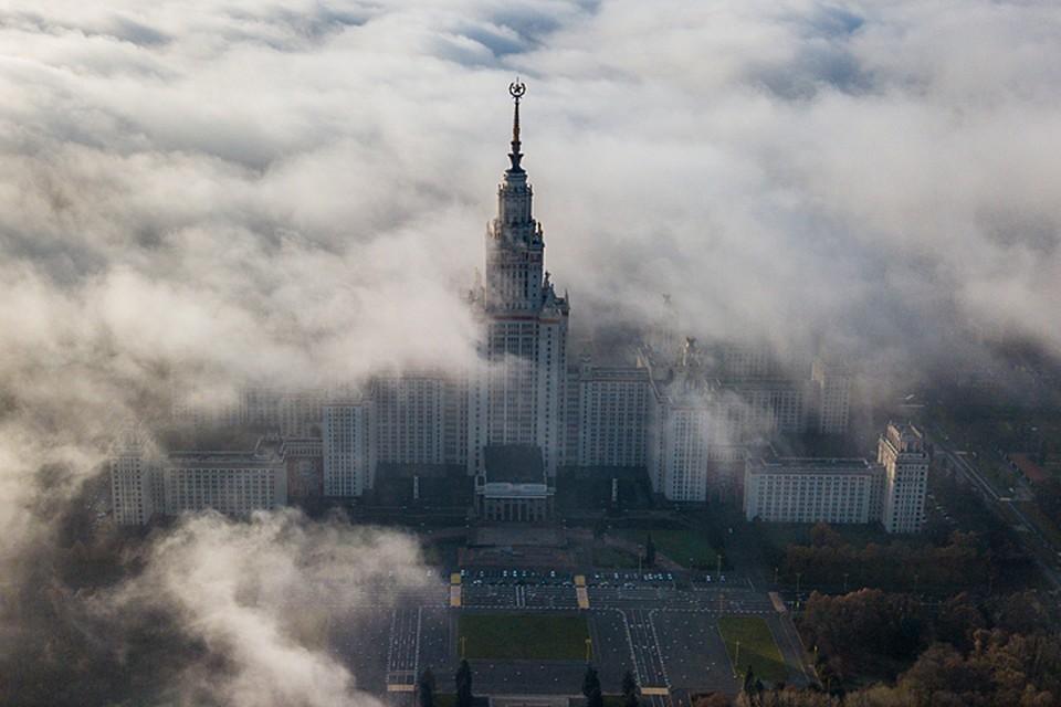 То с Востока, то с Севера, а порой и вовсе из центра Москвы поступали сообщения о нестерпимой вони
