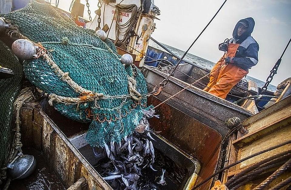 """""""Пообщались мирно"""" - Юрий Трутнев выслушал проблемы приморских рыбопромышленников"""