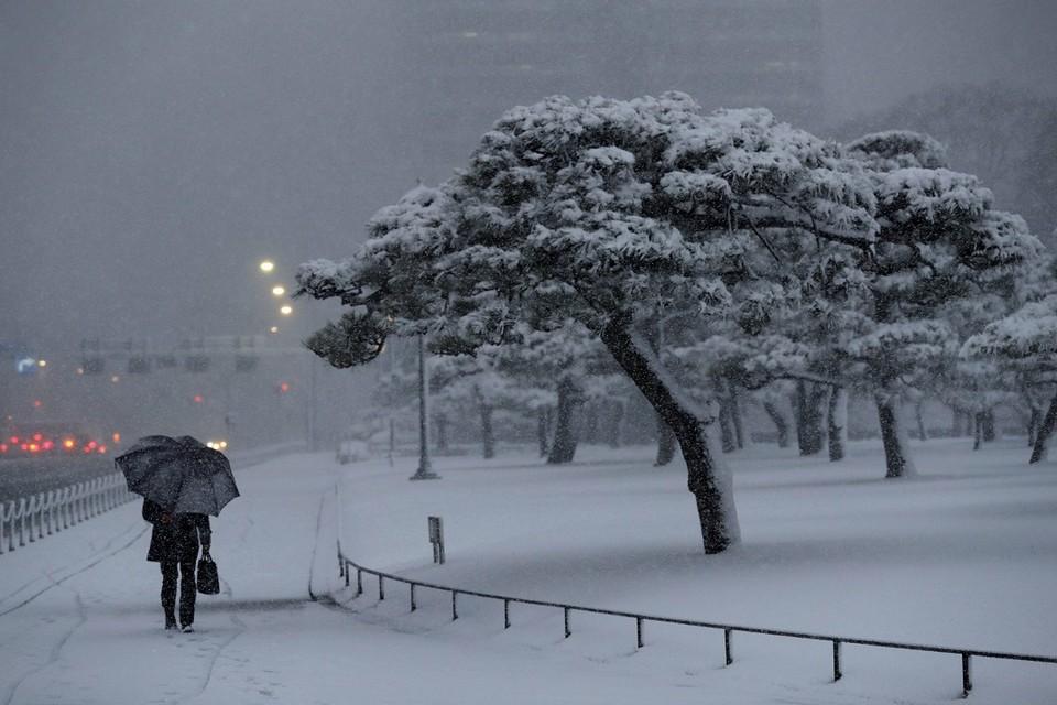 В Японии от снегопадов погибли семь человек