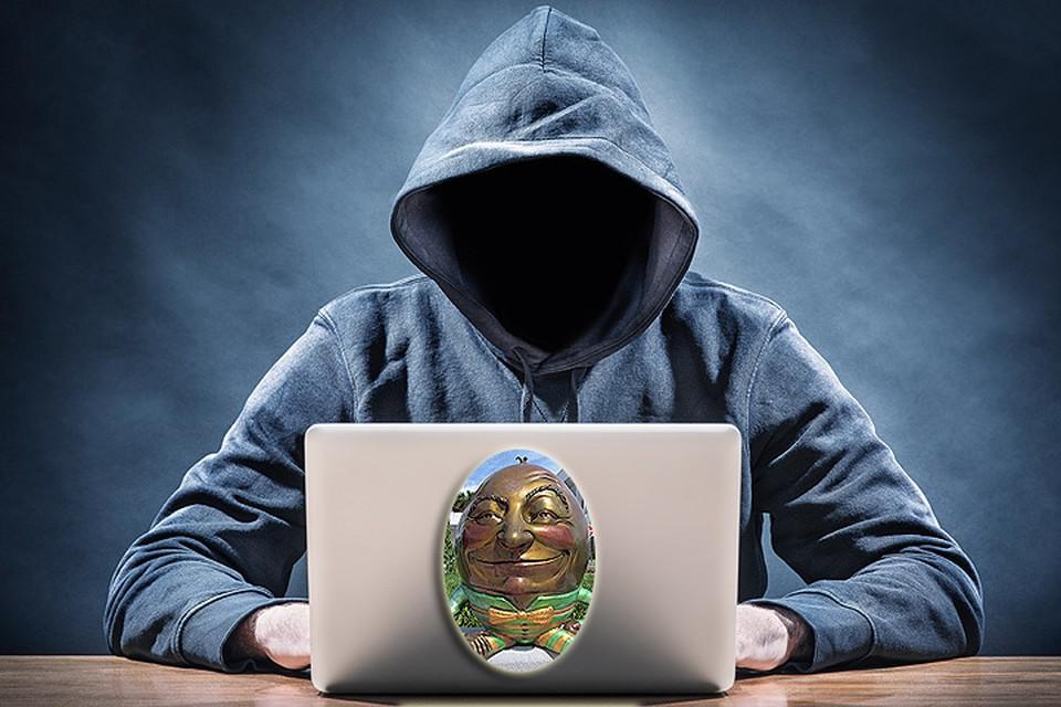 В Польше задержали украинского хакера
