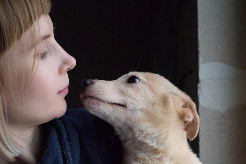 Благодаря усилиям сотрудников фонда, дом нашли более трех тысяч животных. Фото предоставлено фондом «Рука помощи бездомным животным»