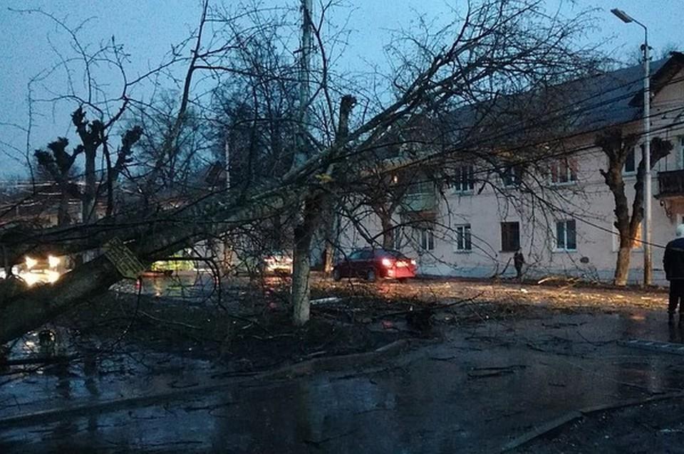 После урагана более 1700 домов в ЦФО остались без электричества
