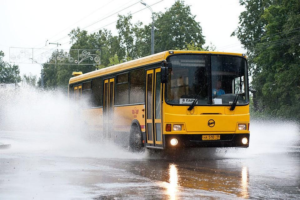 График движения автобусов иппопат