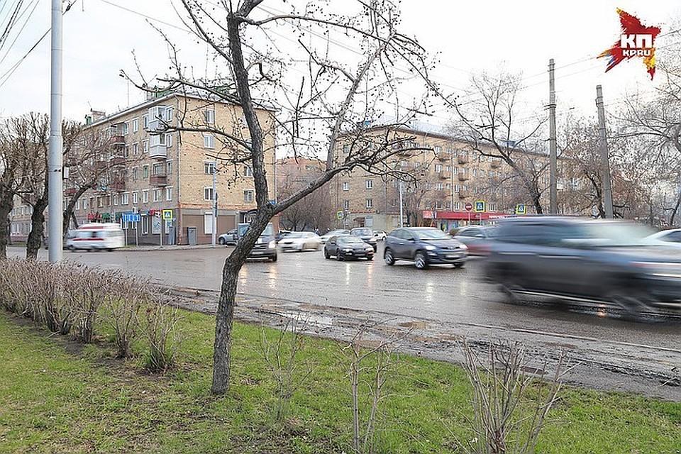 Петербуржцев предупреждают о сильном ветре