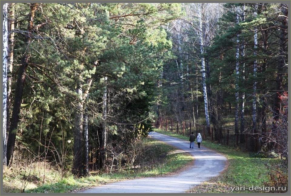 Такие тропинки есть в люом частном секторе. Фото: design-project.org