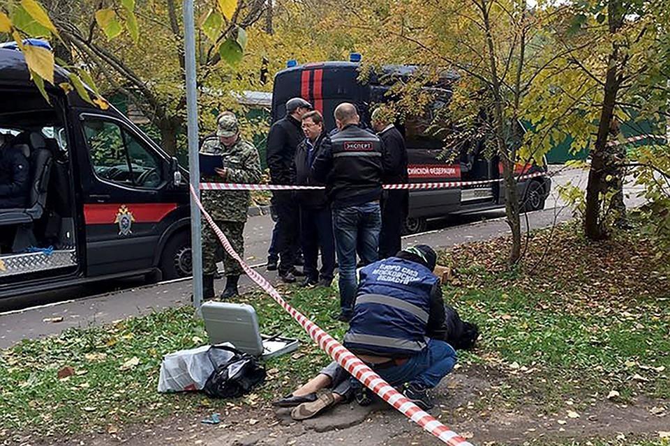 Основная версия убийства следователя Шишкиной - это ее профессиональная деятельность