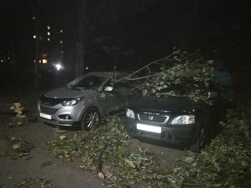 Томские коммунальщики устраняют последствия шквалистого ветра