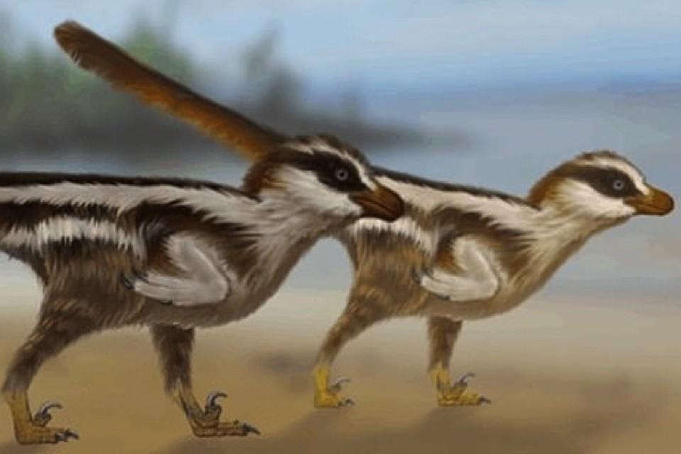 Малютки-динозавры уместились бы на ладони.