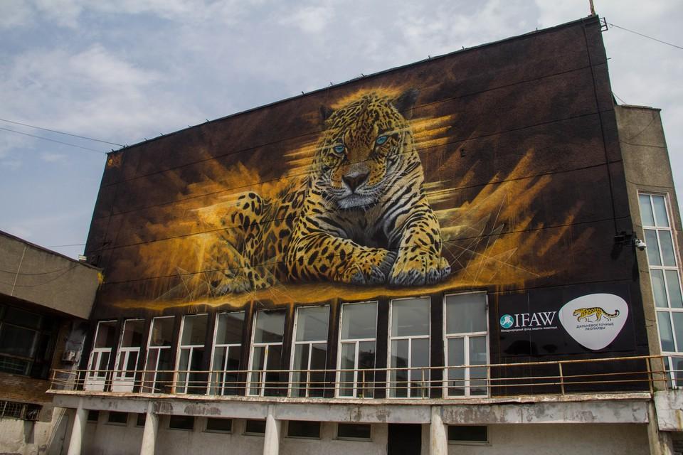 Граффити дальневосточного леопарда так же пропадёт из истории города