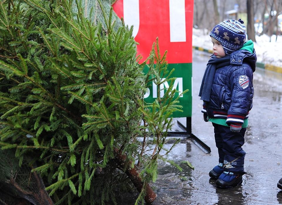 Температура воздуха в Москве вновь начинает опускаться
