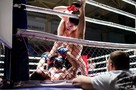 От Алтая до Сахалина: в Новосибирске прошел крупный турнир ММА