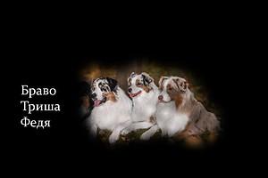 snimaet-para-ishet-raba-s-foto-istoricheskiy