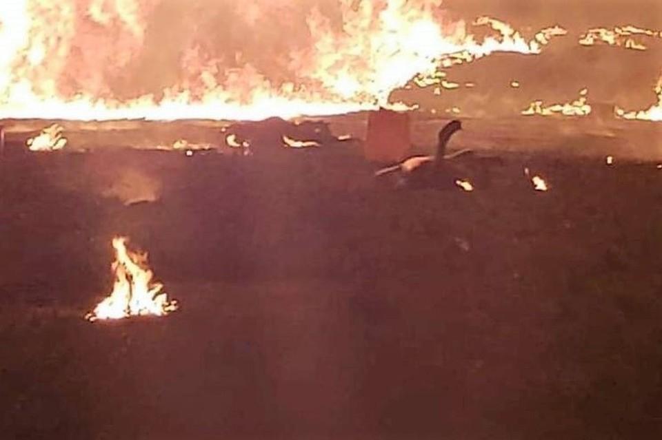 ЧП произошло на крупном трубопроводе Туспан-Тула в штате Идальго.