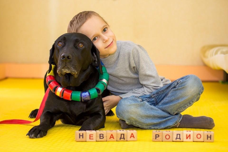 """Реабилитационную программу по канистерапии проходят дети с аутизмом, ДЦП, нарушениями речи, задержкой психического развития, нарушениями слуха и страхом собак Фото предоставлены общественной организацией """"Особые дети"""""""