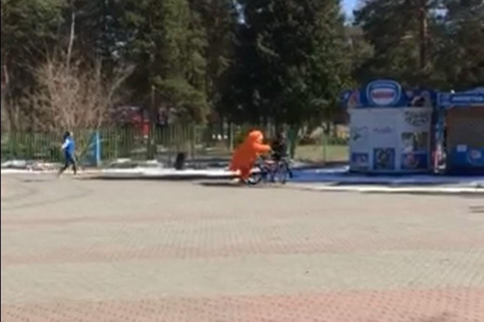 Аниматор в костюме кота задержал вора на велосипеде. Фото: кадр из видео Артура Гизамтова.