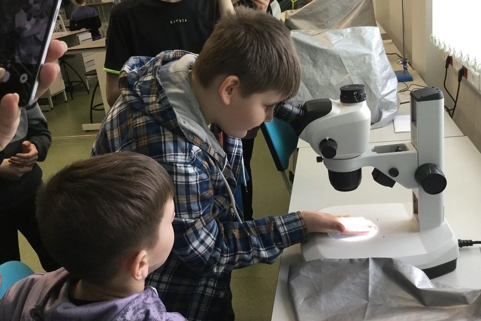 На площадках технопарка, ребята работают на «взрослом» оборудовании и шаг за шагом входят в условия настоящих исследовательских лабораторий. Фото: roskvantorium.ru