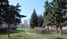 В Рязани зреет идея назвать площадь в честь городов-побратимов