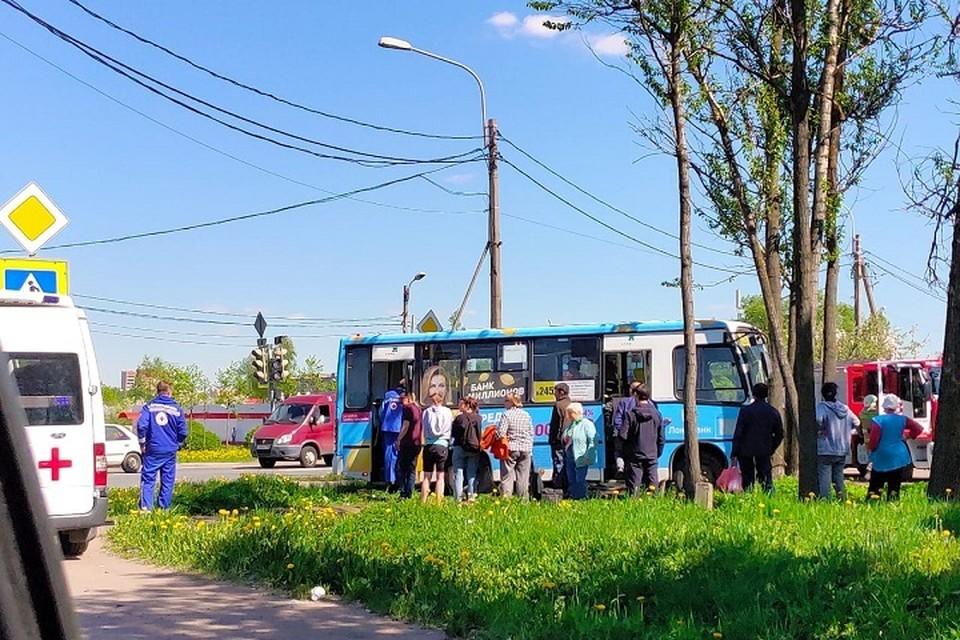 Маршрутка полная пассажиров съехала в кювет и врезалась в дерево в Петербурге