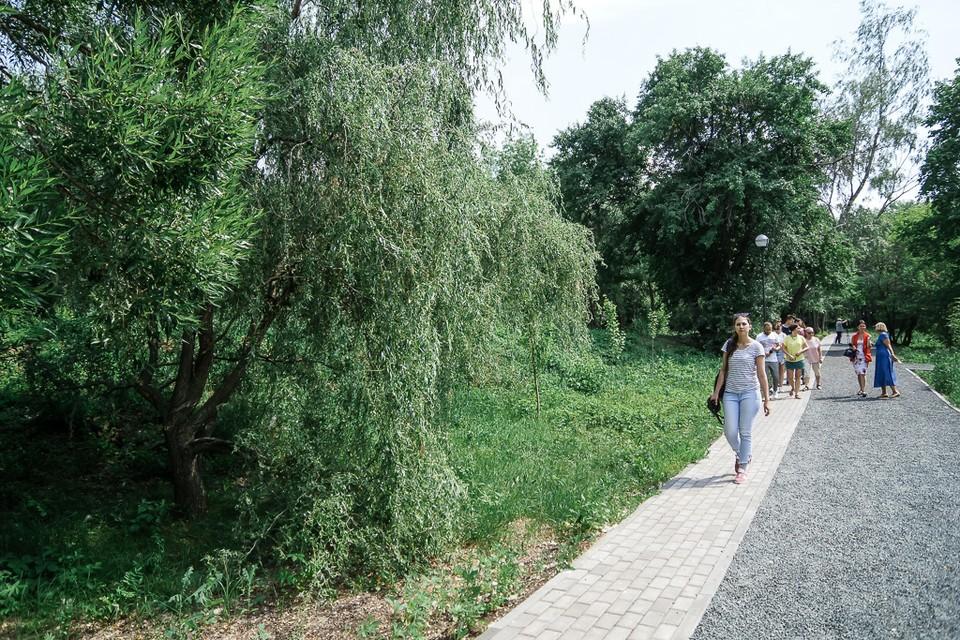 Сад реконструировали в течение трех лет
