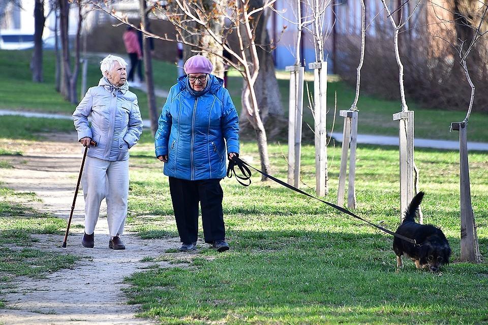 В России заморозку накопительной части пенсии продлят до 2020