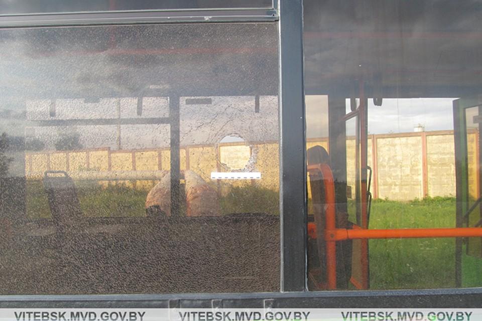 Хулиган разбил булыжником стекло в автобусе, потому что его отказались везти бесплатно. Фото: УВД.