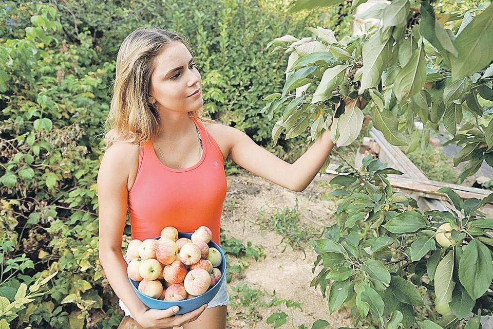 Свои яблоки кажутся самыми лучшими. Но у сетевой торговли другое мнение на этот счет.