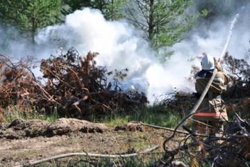 Стихия в Иркутской области: бушуют 140 пожаров, горит более 700 тысяч гектаров тайги