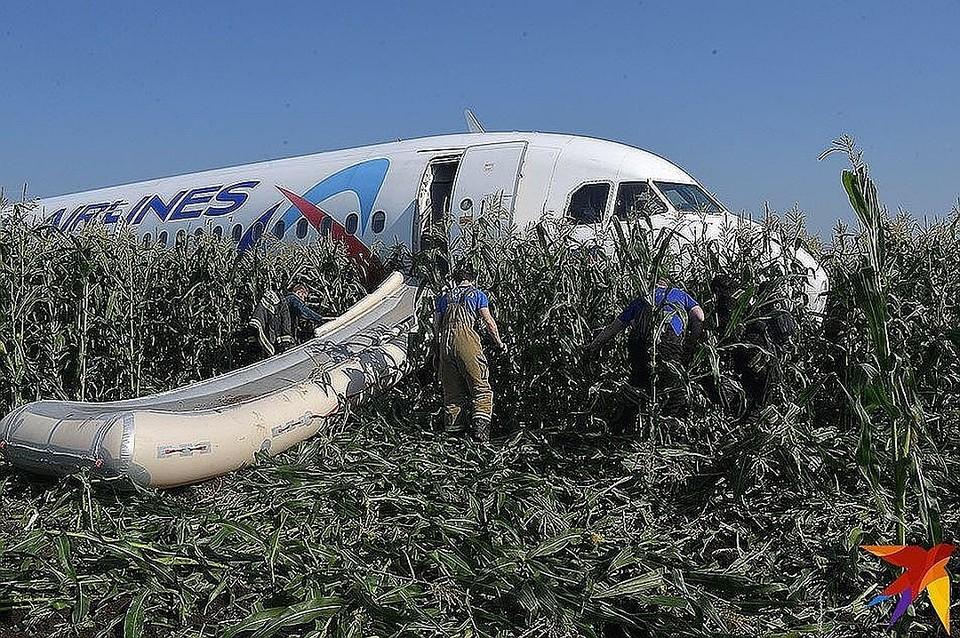 """Самолет совершил жесткую посадку в кукурузном поле возле аэропорта """"Жуковский"""""""
