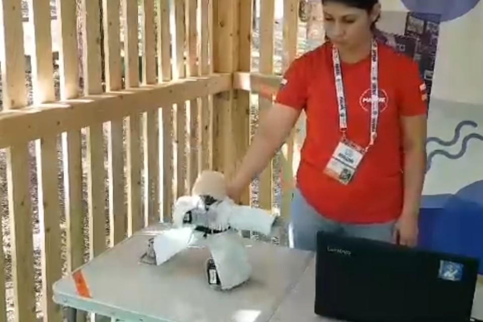 Робот-кавказец Хажби из Северной Осетии