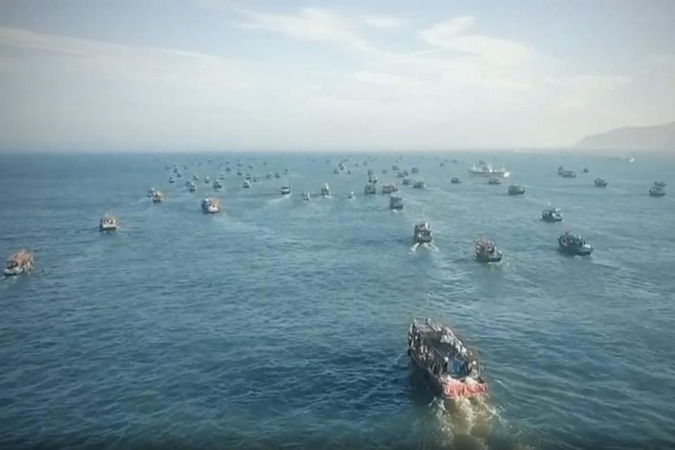 Из-за тайфунов в территориальных водах Приморья укрылись суда иностранных государств