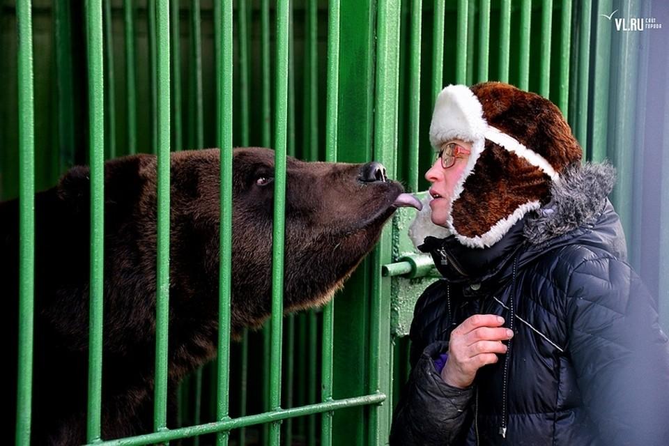 Медведица и человек